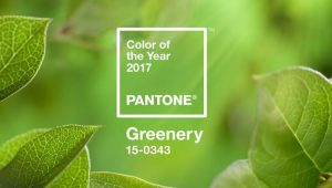 cor do ano de 2017 Greenery